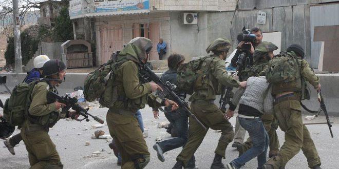 Les forces d'occupation arrêtent 7 Palestiniens en Cisjordanie.