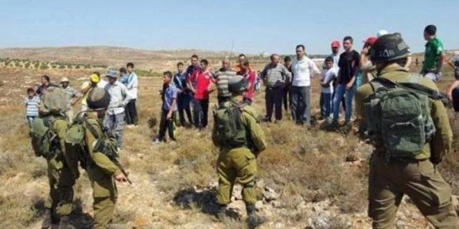 Les forces d'occupation attaquent des agriculteurs palestiniens à l'ouest de Salfit