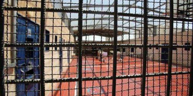 Six détenus palestiniens poursuivent leur grève de la faim pour protester contre les crimes de l'occupation