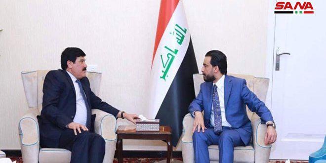 """יו""""ר בית הנבחרים העיראקי דן עם שגריר סוריה בבגדאד ביחסים הבילטרליים"""