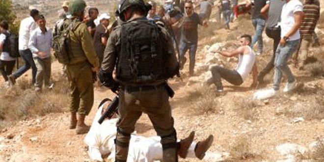 כוחות הכיבוש עצרו 3 פלסטינים בגדה המערבית