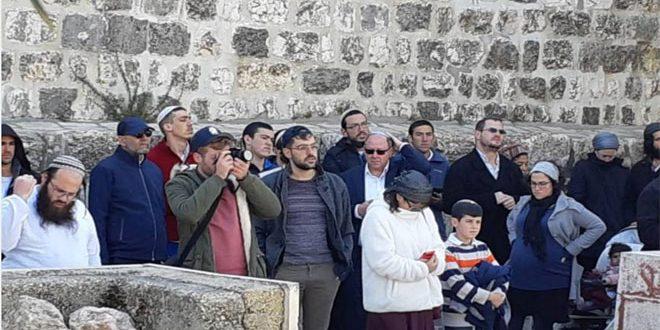 מתנחלים ישראליים חידשו פרצותיהם למסגד אלאקצה