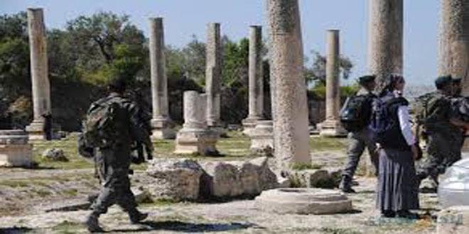 משרד החוץ הפלסטיני קורא לקהילה הבינלאומית להפסיק פשעי הכיבוש באתרים ארכיאולוגיים