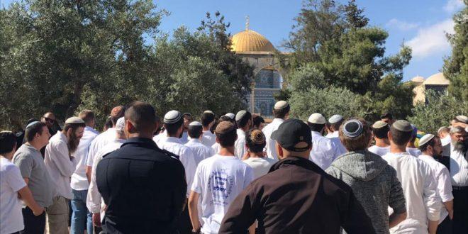 מתנחלים ישראליים חידשו פריצותיהם למסגד אלאקצה תחת שמירה של כוחות הכיבוש