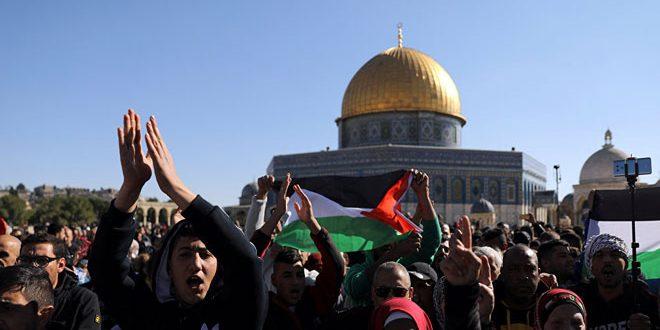 הפלסטינים הדגישו כי סדנת בחרין מעין הצהרת בלפור שניה