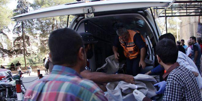 נפילת 7 חללים בשכונות אל-ג'מיליה ואל-חמדאניה שבחלב