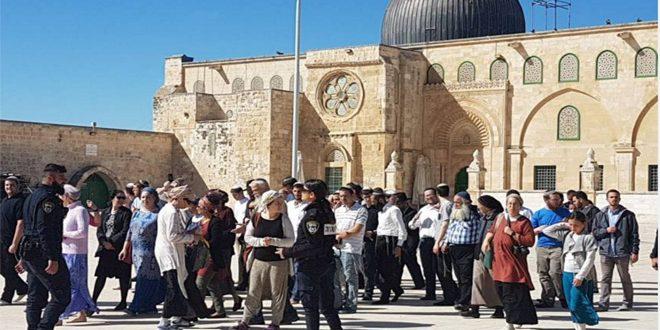 מתנחלים ישראליים פרצו למסגד אלאקצה בשמירת כוחות הכיבוש