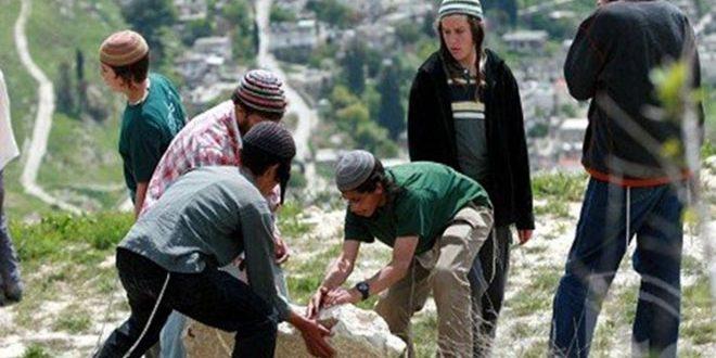 מתנחלים משתלטים על אלפי דונמים מאדמות הפלסטינים בכפר אלג'בעה שבבית לחם