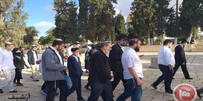 עשרות מתנחלים ישראליים מחדשים את פריצתם למסגד אלקסא באבטחת כוחות הכיבוש
