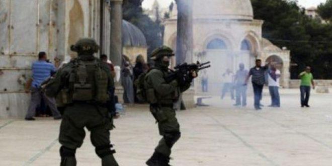 הנשיאות הפלסטינית מגנה את פריצות כוחות הכיבוש החוזרות ונשנות למסגד אל אקצא