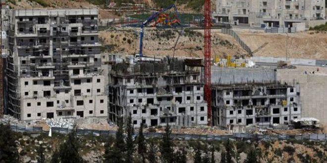 תוכנית חדשה לכיבוש להשתלטות על כ- 700 דונמים משטחי הפלסטינים בדרום שכם