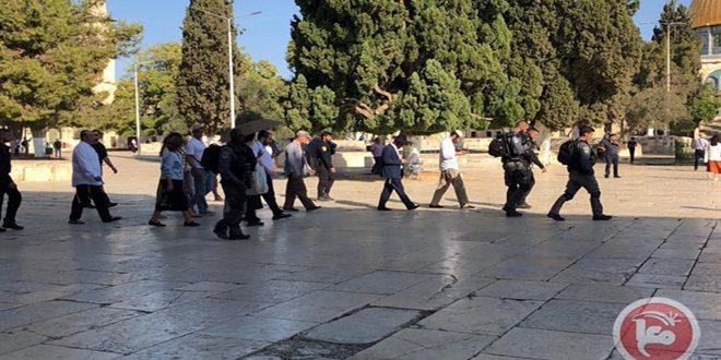מאות מתנחלים ישראליים חידשו פשיטתם על מסגד אלאקצה