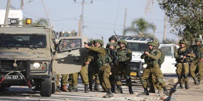 מתנחלים ישראלים תוקפים את החקלאים הפלסטינים בדרום חברון
