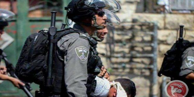הכוחות הישראליים עצרו שמונה פלסטינים בגדה המערבית