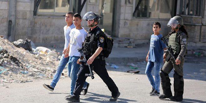 כוחות הכיבוש הישראלי עצרו שני ילדים פלסטינים באל-קודס הכבושה