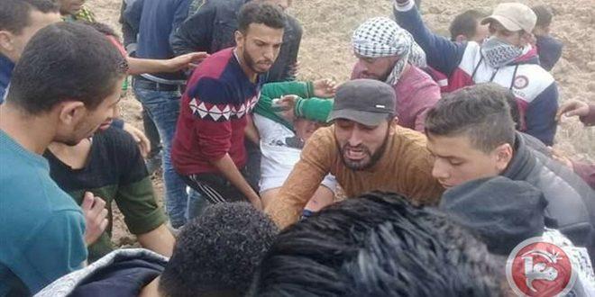 עשרות פלסטינים נפגעו בכדורי כוחות הכיבוש בצפון רצועת עזה