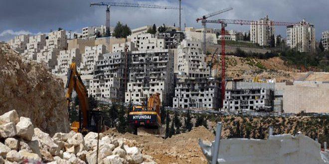 שרים בצ'כיה הדגישו כי תוכניות הספוח הישראליות מפירות את החוק הבינלאומי