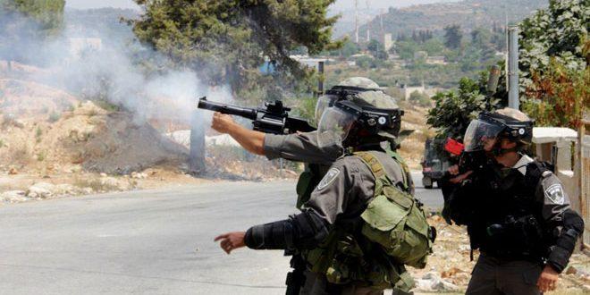 ארבעה צעירים פלסטינים נפצעו מירי הכוחות הישראליים מזרחית לרמאללה