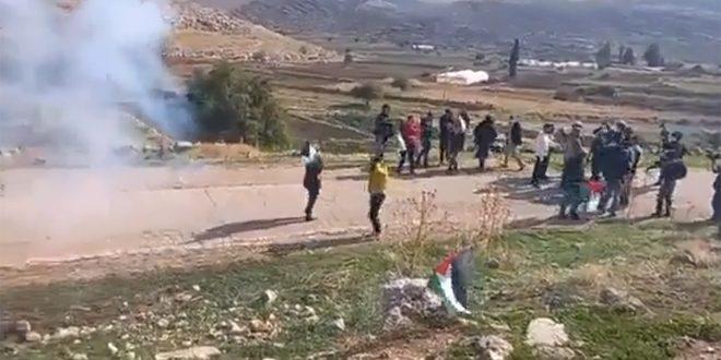 עשרות פלסטינים נפגעו במהלך דיכוי הפגנתם במזרח רמאללה