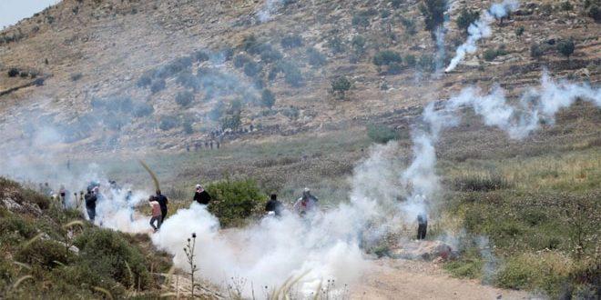 עשרות פלסטינים לקו בחנק במהלך דיכוי הפגנותיהם בגדה המערבית