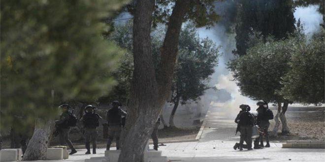 פציעתם של כמה פלסטינים בעקבות פריצתם של כוחות הכיבוש לתוך מסגד אל-אקצא