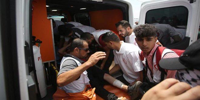 פלסטיני אחד נפגע בכדורי כוחות הכיבוש בדרום שכם
