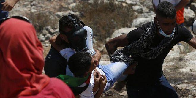 פלסטיני אחד נפצע בהתקפה שבצעו מתנחלים בדרום עיר חברון