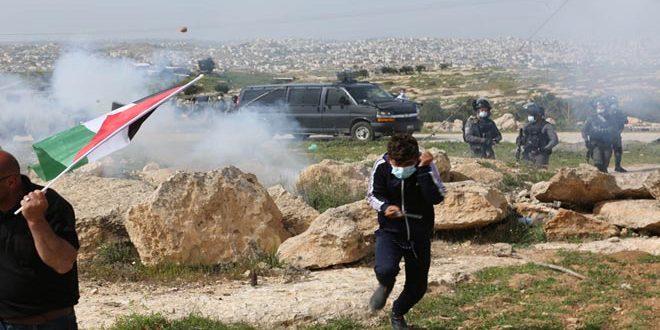 כוחות הכיבוש מדכים הפגנה נגד ההתנחלות דרומית לחברון