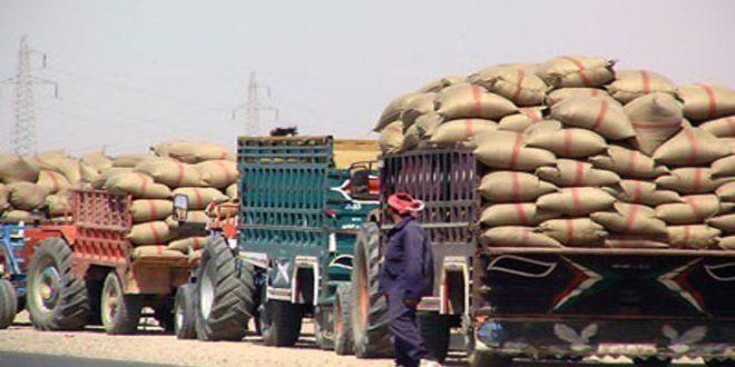 Доставка пшеницы на элеватор щигровский элеватор русский дом