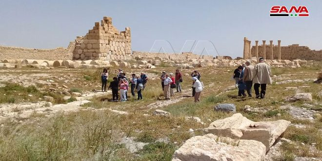 Античный город Пальмира вновь принимает иностранных туристов