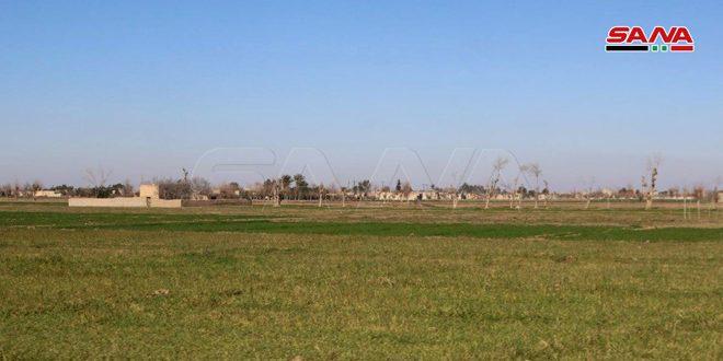 В Дейр-эз-Зоре запущен проект по орошению земель