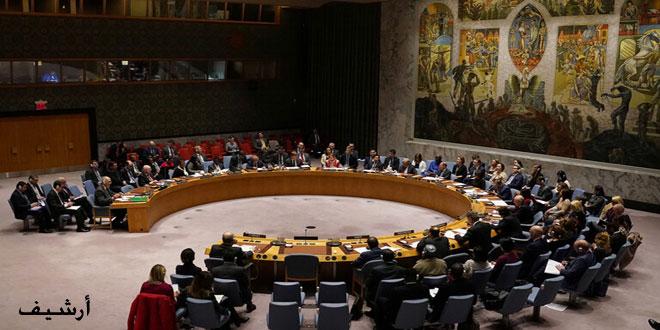 Россия и Китай наложили вето на проект резолюции СБ ООН о поставках гумпомощи Сирии