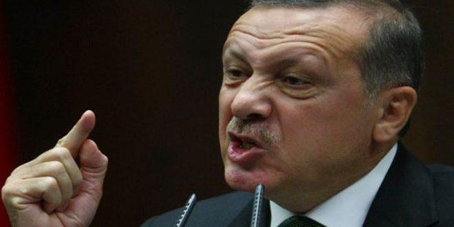 Турецкий офицер в отставке: Эрдоган вызвал кризис в Сирии и помешал его окончательному урегулированию