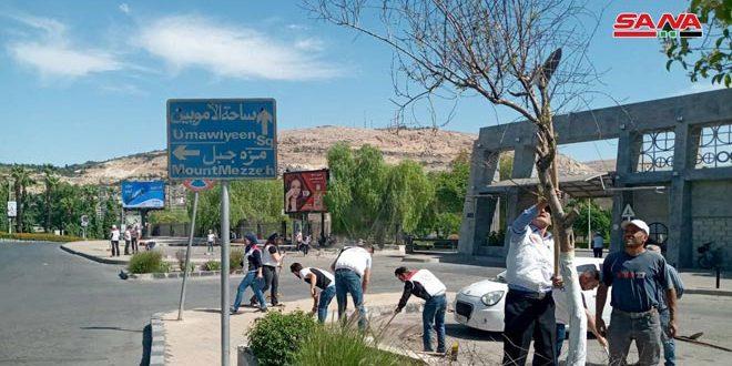 День добровольного труда в кварталах Дамаска