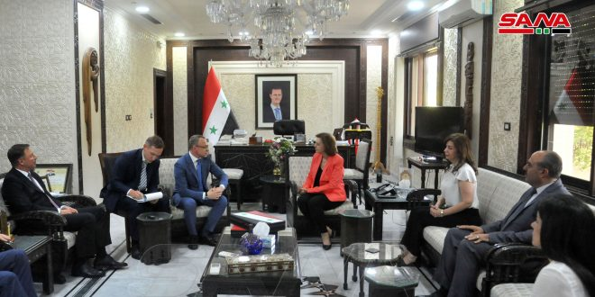 Обсуждение путей развития сирийско-российского культурного сотрудничества