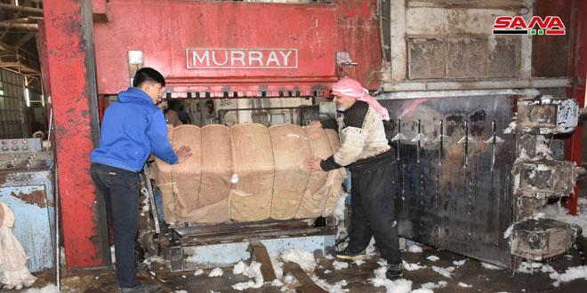 محلج الفداء بحماة: حلج 8500 طن من الأقطان المحبوبة