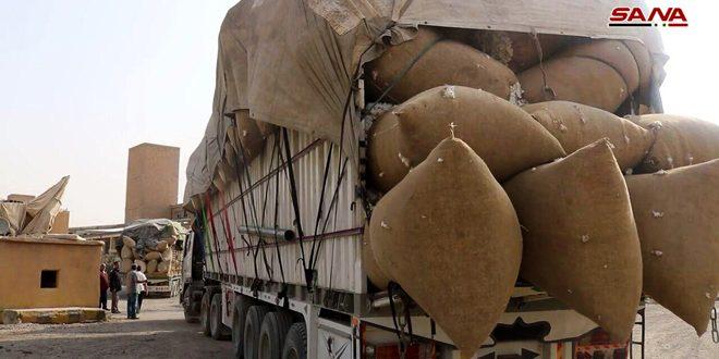 صرف مستحقات الفلاحين من محصول القطن في دير الزور