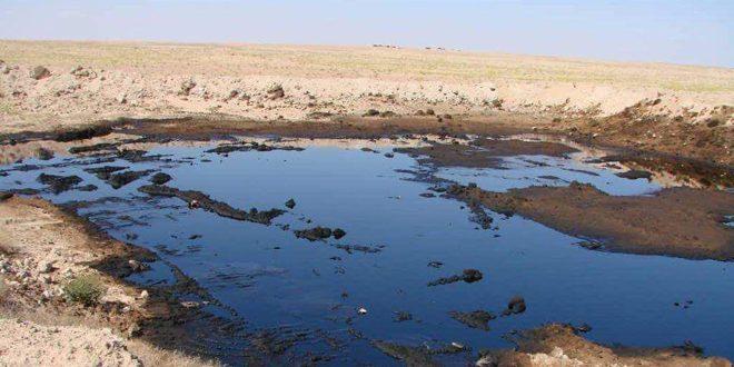 في اليوم العالمي لمكافحته.. مشاريع محلية لتخفيف آثار التصحر والحد من تدهور الأراضي