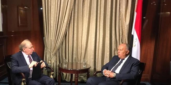 شكري: ضرورة إيجاد حل سياسي للأزمة في سورية والقضاء على الإرهاب