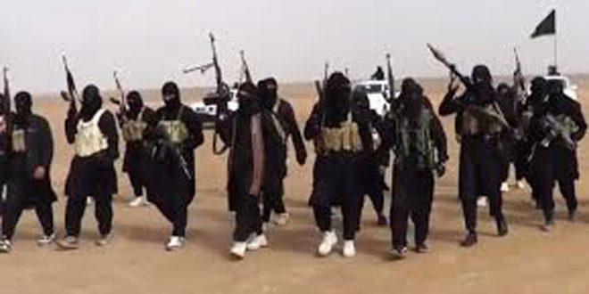 برلين: 160 إرهابيا ألمانيا قد يكونون قتلوا في سورية والعراق