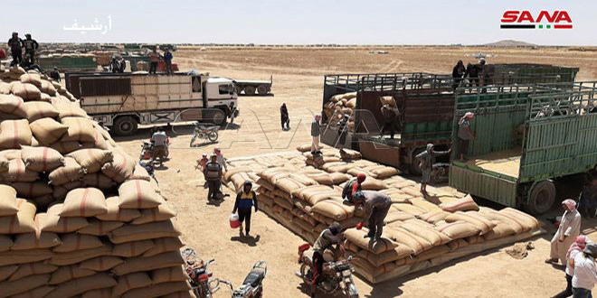 فلاحو دير الزور يواصلون تسويق محصول القمح