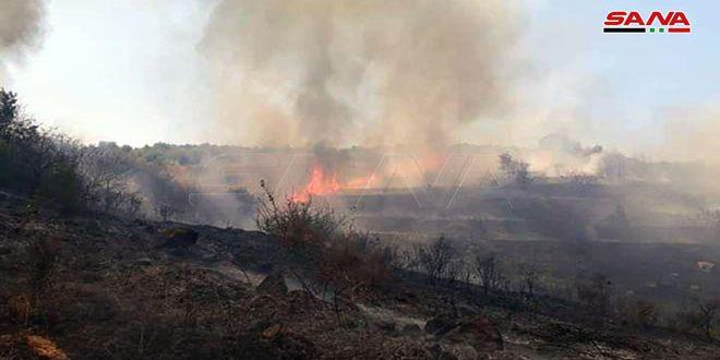 تجدد الحرائق في قرية الزويتينة غرب حمص