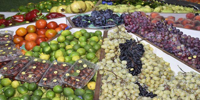 هيئة دعم الصادرات: بدء تنفيذ برنامج الاعتمادية والتسويق الخارجي للمنتجات الزراعية