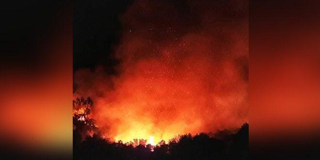 استشهاد عنصرين من دائرة حراج اللاذقية وفرق الإطفاء تكافح لاخماد حريق كبير اندلع في ريف القرداحة