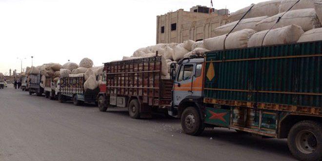 تحويل 900 مليون ليرة ثمن الأقطان المستلمة من مزارعي دير الزور