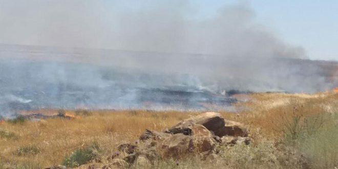 إخماد حرائق عدة في السويداء ألحق بعضها أضراراً بالمحاصيل الزراعية