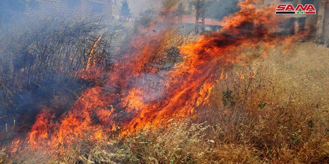 العمل على إخماد حريق نشب بأعشاب يابسة بمحاذاة طريق المتحلق الجنوبي من جهة داريا بريف دمشق