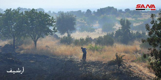 إخماد عدد من الحرائق في أراض مزروعة بالقمح والتفاح والسنديان في السويداء
