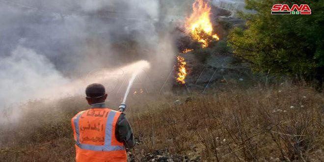 حريق بالقرب من بلدة الناصرة وآخر على الحدود الإدارية بين حمص وطرطوس وفرق الإطفاء تعمل على إخمادهما