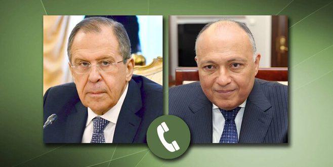 لافروف وشكري يبحثان جهود التوصل إلى تسوية سياسية للأزمة في سورية